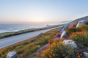 california professional liability insurance