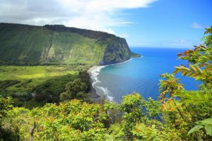 hawaii professional liability insurance