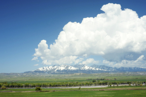 Montana liability insurance