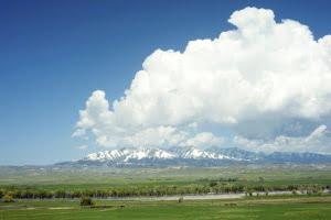 Montana esthetician insurance