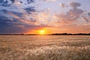 north dakota professional liability insurance